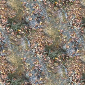 Creek and Root | Seamless Waterside Photo Print