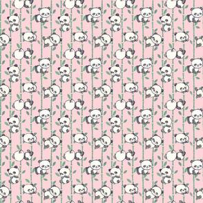 Lazy Little Pandas in Pink