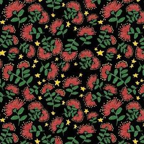 Christmas Pohutukawa Black
