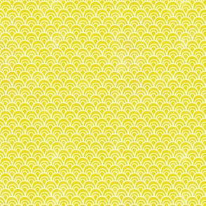 Scallops Soft - SM Yellow