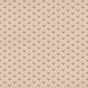 Silver Star Pattern