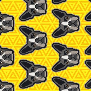 Boston Terrier Yellow Geometric
