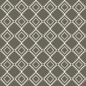 Southwestern Blanket design brown-2 150