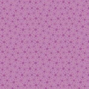 Purple Spidies