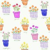 Rs_-_more_happy_pots_shop_thumb
