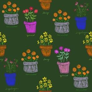 More Happy Pots_Green