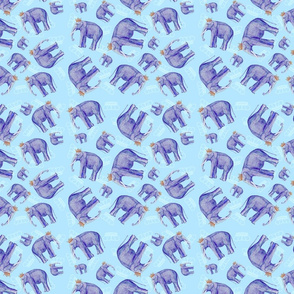 elephant blue ground