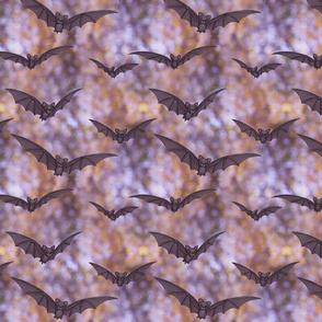 black bats and purple bokeh