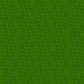 110818 green