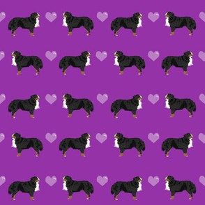 bernese mountain dog love - purple cute love dog, dog fabric, bernese dog fabric, -  dark purple and light purple