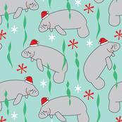 manatees-with-santa-hats-on-teal