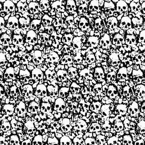 Skull Wall 2019