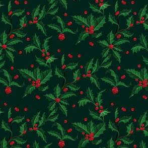 Holly Pattern Christmass plant