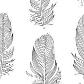 Rrr1849b_feathers_bw_150_shop_thumb