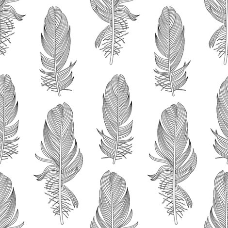 R1849b_feathers_bw_025_shop_preview