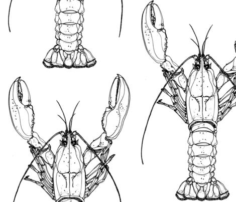 Lobster fabric by kitty_legg on Spoonflower - custom fabric