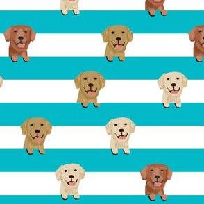 golden retriever stripes fabric - cute golden retriever dog, dog fabric, dogs fabric, golden retrievers stripes - turquoise