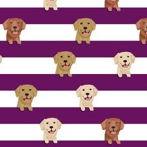 golden retriever stripes fabric - cute golden retriever dog, dog fabric, dogs fabric, golden retrievers stripes -  dark purple