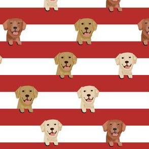 golden retriever stripes fabric - cute golden retriever dog, dog fabric, dogs fabric, golden retrievers stripes -  red