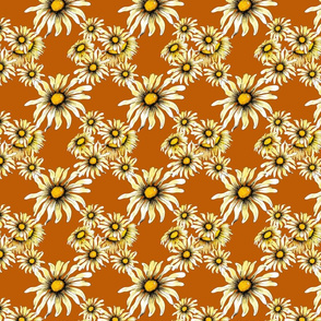 SF Daisy Crazy pattern