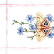 Tea Towel: Watercolor Io Moth