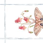 Tea Towel: Watercolor Polyphemus Moth