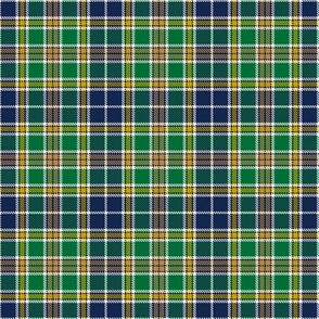 Notre Dame Team Colors Plaid