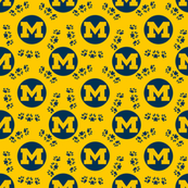 Michigan Team Colors