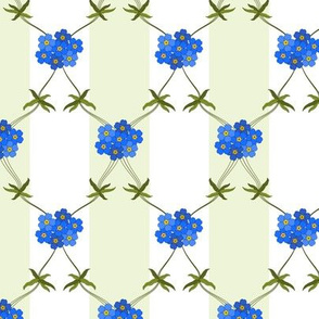 Forget-me-not GS Full