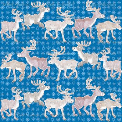 Sniffing Reindeer - blue background