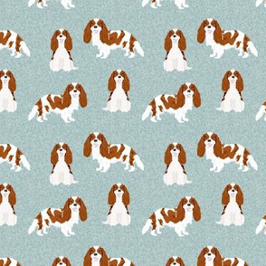 SMALL - cavalier king charles spaniel fabric, cavalier spaniel fabric, dog fabric, dog breeds fabric, blenheim fabric - pet quilt b coordinate
