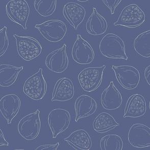 fig lines on blue