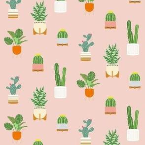 Pink Cactus Pattern