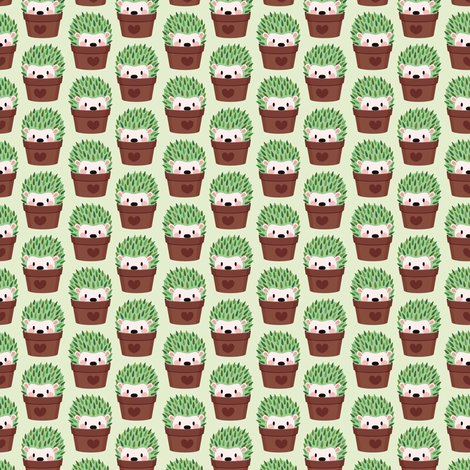 Rhedgehoggreen2_shop_preview