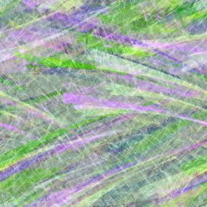Field_crocus-green