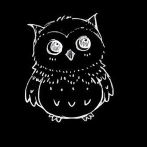 White Owl on Black Background