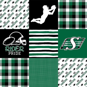 Football//Rider Pride - Wholecloth Cheater Quilt