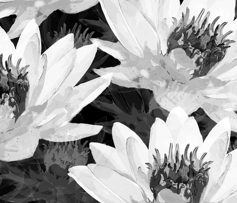 Water Lilies in Black and White fabric by platypusmaxprints on Spoonflower - custom fabric