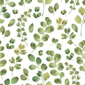 Green Leaves / Leafy Leaf