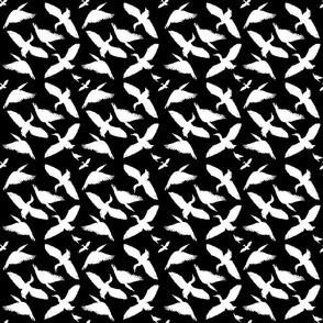 Cormorants pattern white on black