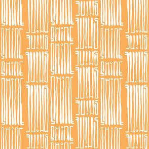 Shine Orange Bidirectional