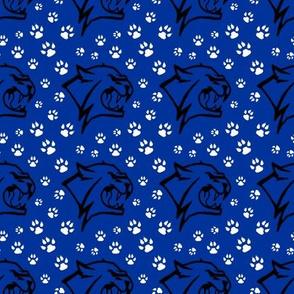 Kentucky Wildcats Team Colors