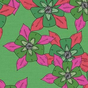 Sketch Aquilegia Flower - Pink & Green