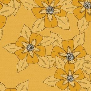Sketch Aquilegia Flowers - Yellow