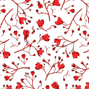 Rflametree-flowers_shop_thumb
