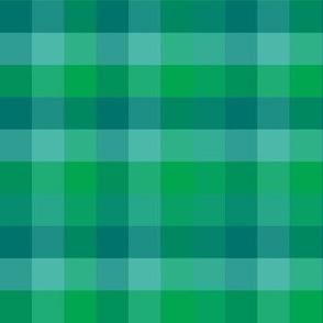 Check / Plaid - Sea Green