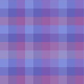 Check / Plaid - Purple