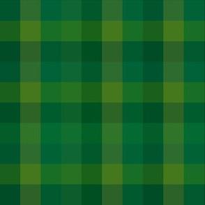 Check / Plaid - Dark Green