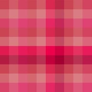 Check / Plaid - Pink