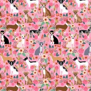 SMALL - Chihuahua dog dogs florals cute pink nursery baby cute girls pet dog fabric